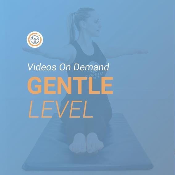 Gentle Level